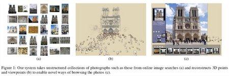 Fig1S.jpg