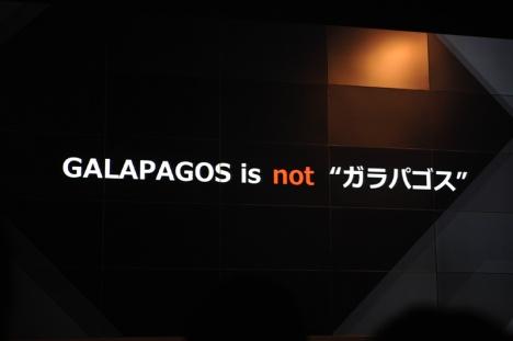 GALAPAGOS_02.jpg