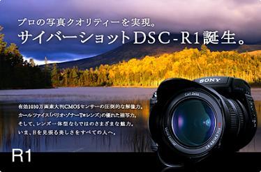 R1_image.jpg