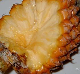 snack-pine-danmen.jpg