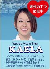 weekly_kaera02.jpg